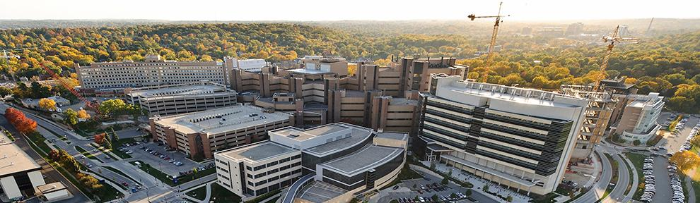 Aerial view of the UW Health Sciences Campus